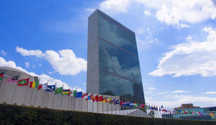 """A APDES acabou de obter o """"special consultative status"""" atribuído pelo Conselho Económico e Social (ECOSOC) das Nações Unidas"""